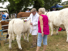 40-th-charleville-show-027