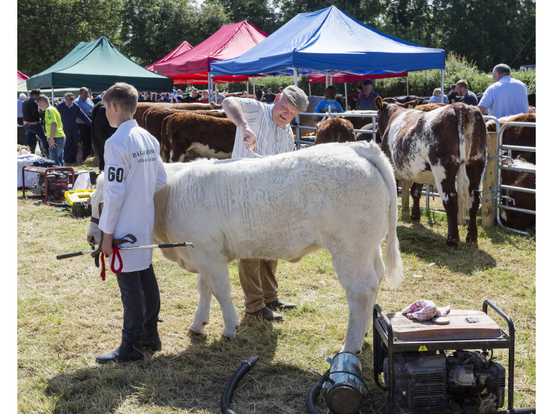 40-th-charleville-show-015-1