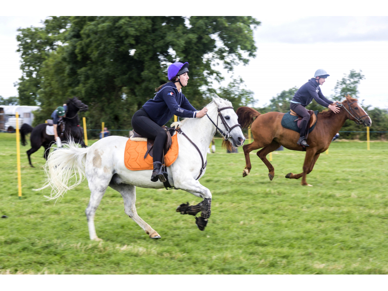 40-th-charleville-show-132